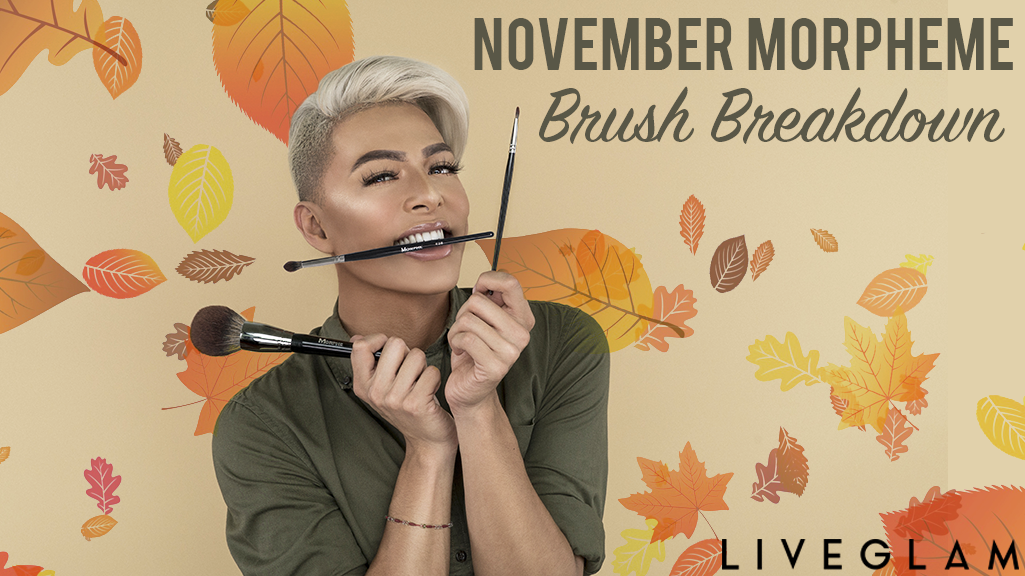 November LiveGlam MorpheMe Brush Breakdown
