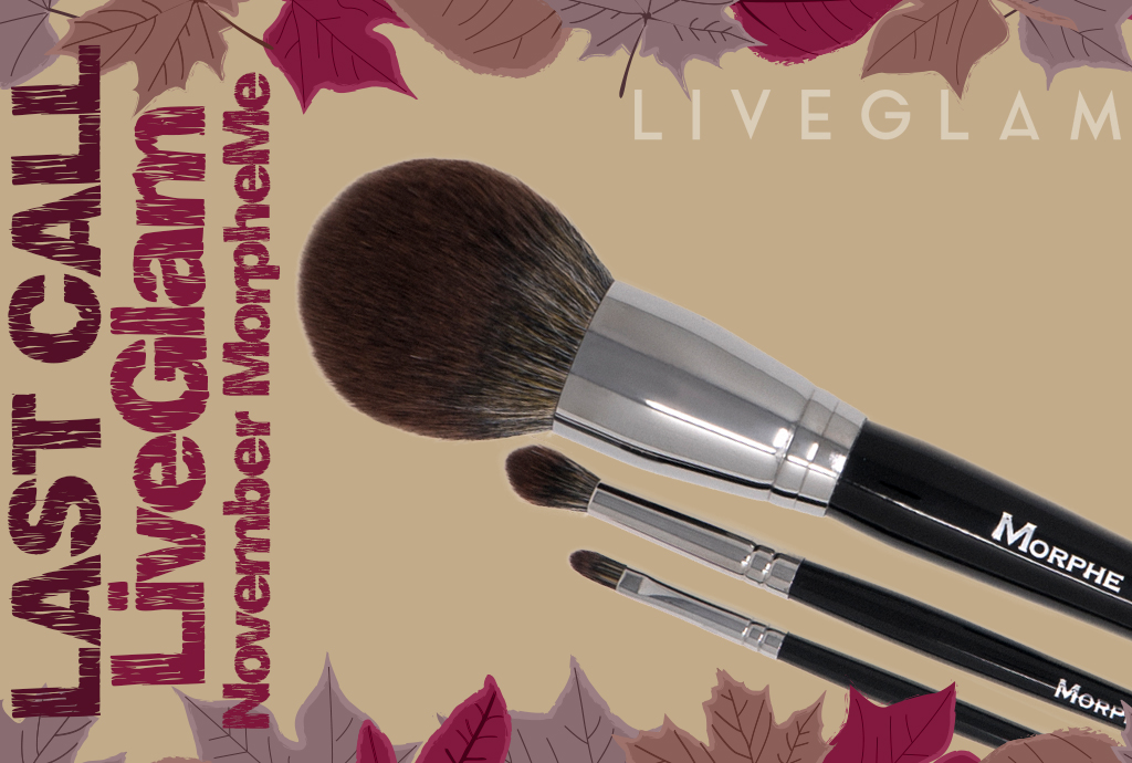 Last Call November 2017 MorpheMe Brushes