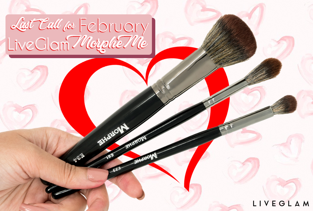 Last Call for February MorpheMe Brushes
