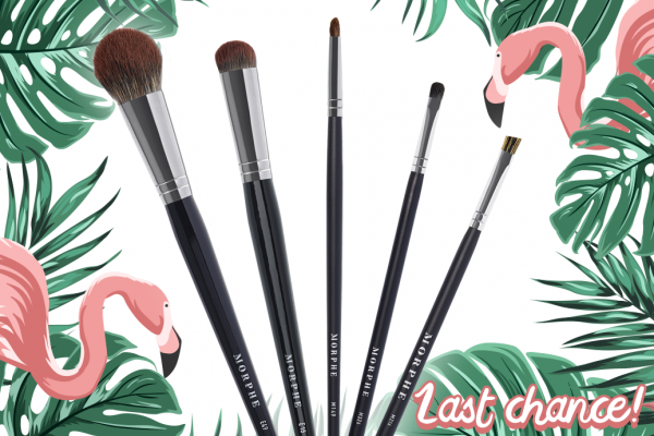 Last Call for LiveGlam June 2019 MorpheMe Brushes!