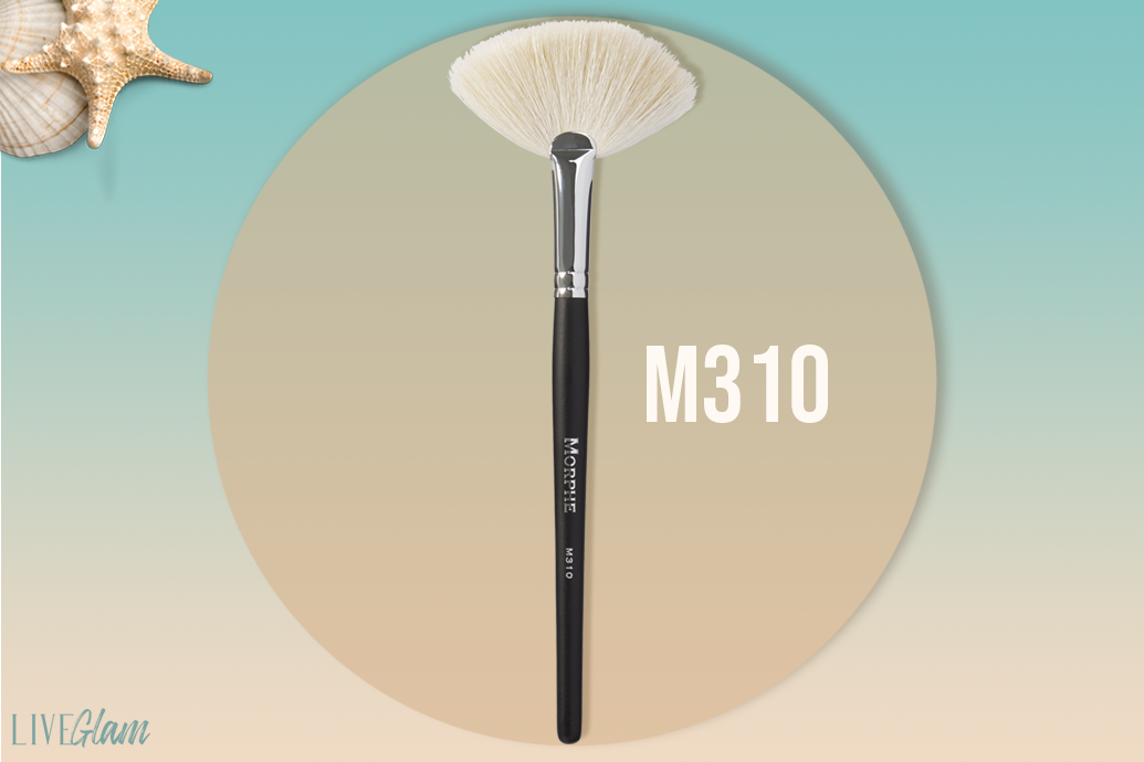 Morphe brush m310