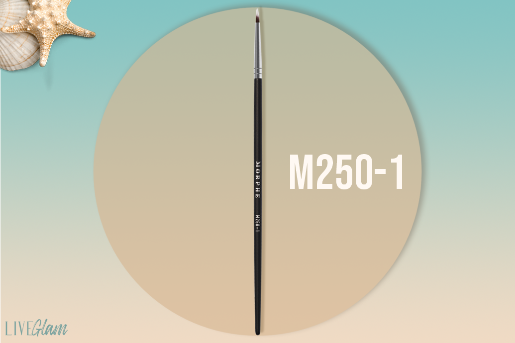 Morphe m250-1 brush